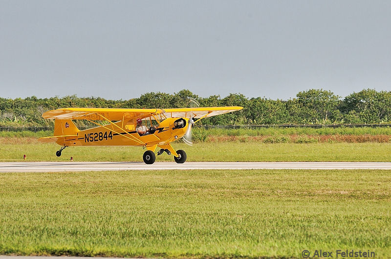 Piper J3 Cub at Homestead General (X51)