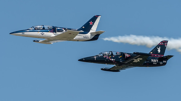 Pair of Czech L-39s