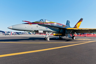 Canadian CF-18 that never flew.  Thanks Canada for showing up!