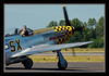With the old warbirds a big part of their character is the nose art.