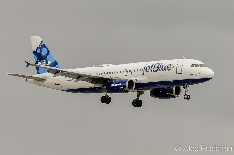 """Airbus A320 """"Honk if you love Blue"""""""