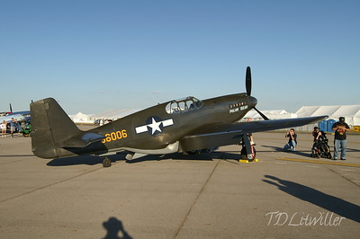 P-51 A Mustang Polar Bear  Gathering of Mustangs and Legends