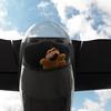 Garfield, the tail gunner on the B-25 Mitchell