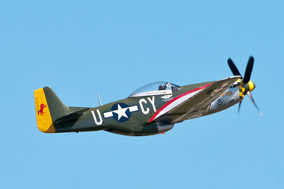 "P-51 Mustang ""Gunfighter"""