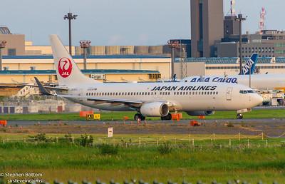 JA201J JAPAN AIRLINES B737-800