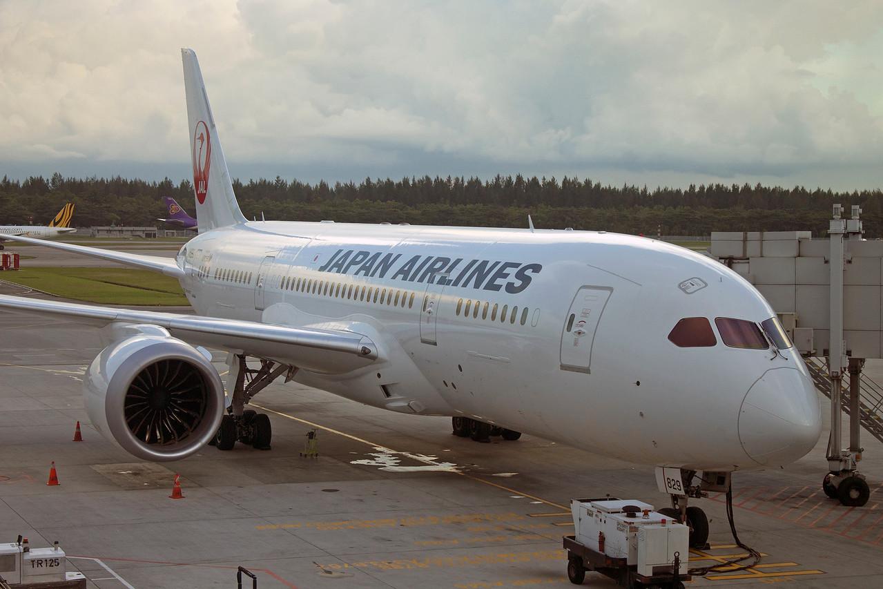 JA829J JAPAN AIRLINES B787-800