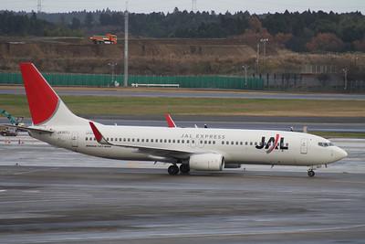 JA307J JAL EXPRESS 737-800