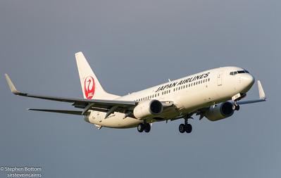 JA312J JAPAN AIRLINES  B737-800