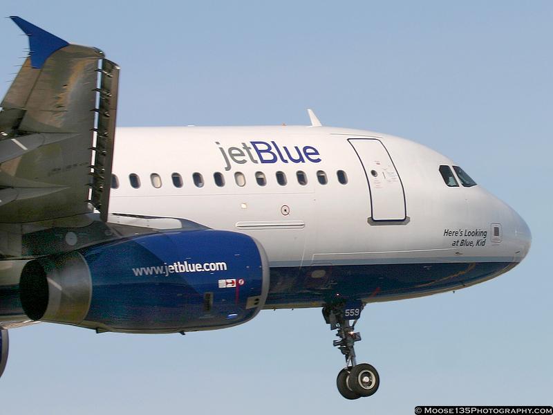N559JB - Here's Looking at Blue, Kid