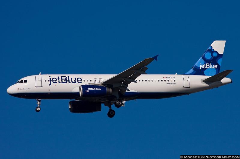 N566JB - Blue Suede Shoes