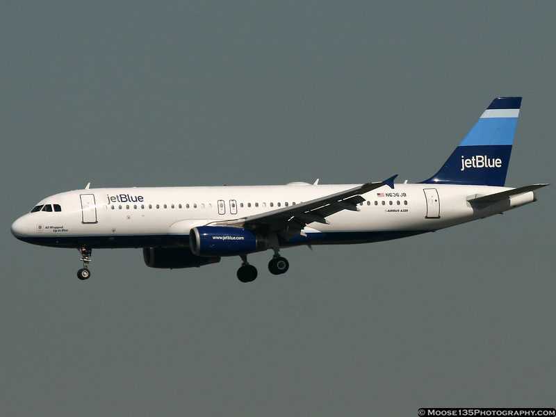 N636JB - All Wrapped Up In Blue