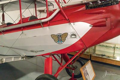 Gypsy Moth Nose Art