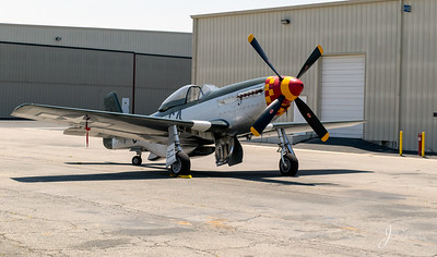 P51 Mustang Wee Willy