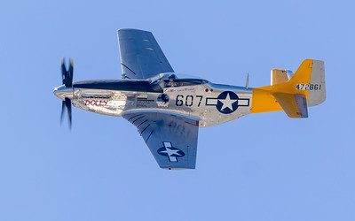 P51 Spam Can/Dolly