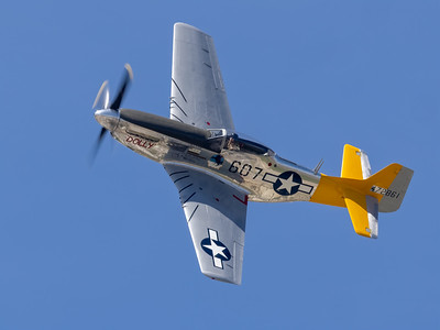 P51 Wee Willy/Dolly
