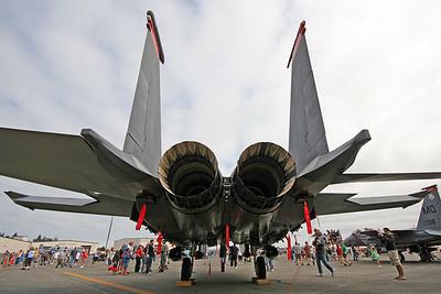 F-15 (100465976)