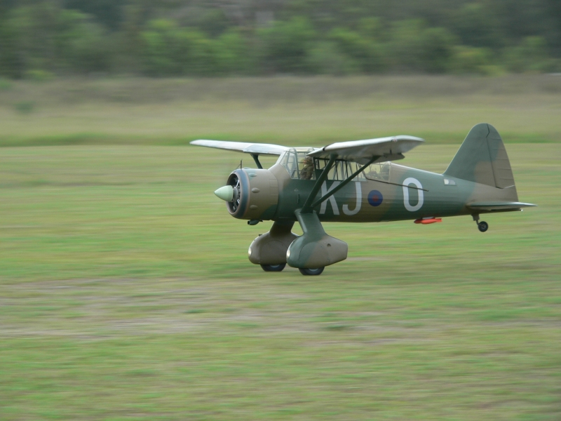 Alf William's Lysander