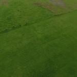 Fun fly drone