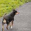 joshredsunphoto.com<br /> All rights reserved