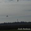 Flying 1-4-15_0006