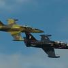 Pair of Czech L-39s