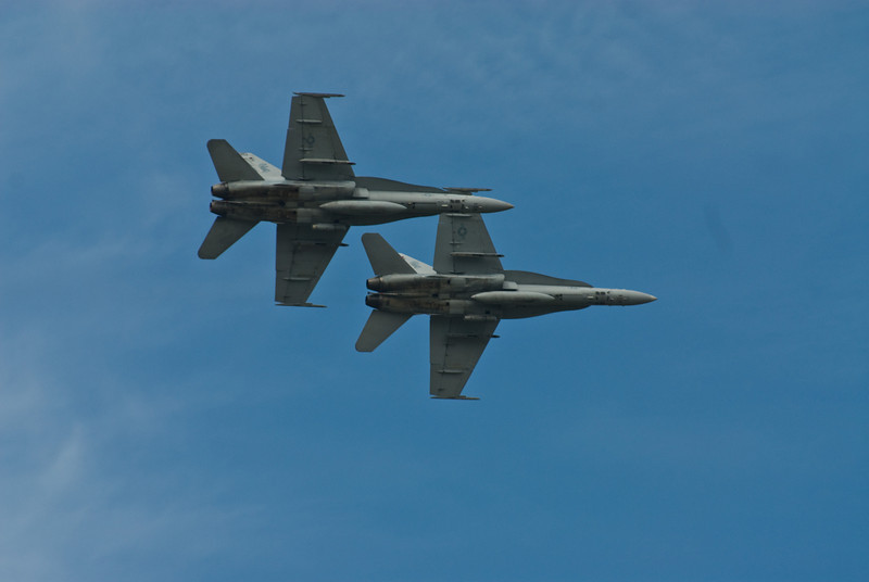 Pair of Hornets banking away