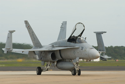 Hornet taxiing in front of the crowd