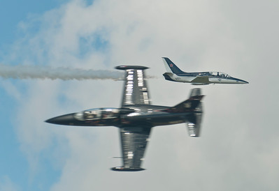 Pair of L-39s