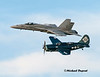 Navy Tailhook legacy flight.  F/A 18 Hornet and last flying SB2C Helldiver
