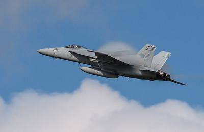 "F/A 18E  Super Hornet from VFA-131 ""WILDCATS"""