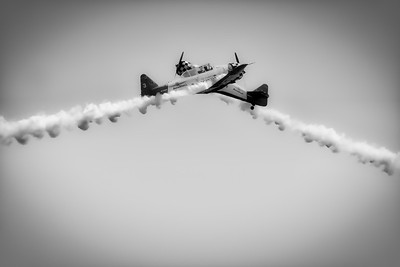 North American Aviation T-6 Texan - Aeroshell - Chicago Air & Water Show - Chicago, Illinois - Photo Taken: August 21, 2011