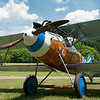 Rhinebeck's Albatros D.Va completed a complete restoration in 2013