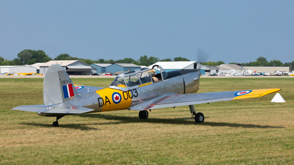 18003 (NX146DK). De Havilland Canada DHC-1 Chipmunk Canadian Air Force. Oshkosh. 240719.