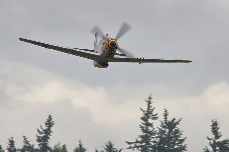 """P-51D Mustang""""Epupa Epops"""""""