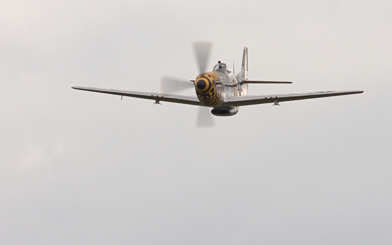 "P51-D Mustang ""UPUPA EPOPS"" from FHC at Paine Field, Everett WA"