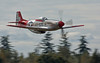 "On the deck and over the speed limit....<br /> <br /> P-51D ""Val-Halla"" of Heritage Flight Museum at Paine Field"
