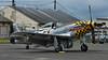 "P-51D Mustang ""Upupa Epops"" ... storm brewing!"