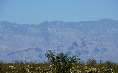 mountain from Pima Air Museum 6653