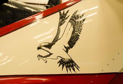Eagle on plane 5911