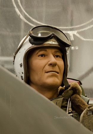 Fighter pilot 6763