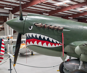 1941 CURTISS WRIGHT P-40E Nose ARt