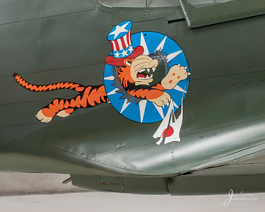1941 CURTISS WRIGHT P-40E Body Art