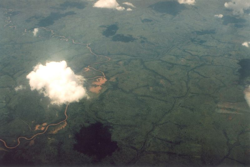 Somewhere above Central Africa. I've never seen so many trees (aka broccoli) in my whole life! It went on for hours.