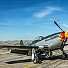 "North American P-51 Mustang...<br /> <br /> The North American Aviation P-51 Mustang was an American long-range, single-seat fighter and fighter-bomber used during World War II, the Korean War and other conflicts. The Mustang was conceived, designed and built by North American Aviation (NAA) in response to a specification issued directly to NAA by the British Purchasing Commission. The prototype NA-73X airframe was rolled out on 9 September 1940, 102 days after the contract was signed and, with an engine installed, first flew on 26 October.<br /> <br /> At the start of the Korean War, the Mustang was the main fighter of the United Nations until jet fighters such as the F-86 took over this role; the Mustang then became a specialized fighter-bomber. Despite the advent of jet fighters, the Mustang remained in service with some air forces until the early 1980s. After World War II and the Korean War, many Mustangs were converted for civilian use, especially air racing, and increasingly, preserved and flown as historic warbird aircraft at airshows. <a href=""http://en.wikipedia.org/wiki/North_American_P-51_Mustang"">http://en.wikipedia.org/wiki/North_American_P-51_Mustang</a><br /> <br /> Planes of Fame Air Show, May 3-4, 2014<br /> Chino Airport<br /> Chino, CA<br />  <a href=""http://planesoffame.org/"">http://planesoffame.org/</a><br /> <br /> Thank you for viewing and commenting, much appreciated!<br /> <br /> Critiques welcome...<br /> <br /> 9 August 2014"