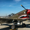 "Curtiss P-40 Warhawk...<br /> <br /> HISTORY<br /> <br /> The P-40 is most widely known as the aircraft of the Flying Tigers, aka the American Volunteer Group (AVG), who began fighting the Japanese in China during the early days of the Pacific war.<br /> <br /> The P-40 was not as maneuverable as the aircraft types flown by the Japanese.<br /> <br /> The P-40 was built in a number of variants, sold to several foreign air forces, and operated under a plethora of names.<br /> <br /> It was known as the Warhawk to the USAAF, while the British Commonwealth countries called the early versions Tomahawks and the later versions Kittyhawks. A number served with the SovietAir Force, under the lend-lease program.<br /> <br /> The aircraft served in all theaters of WW2.<br /> <br /> Purchased by Edward Maloney in 1960 and restored to flight by Planes of Fame Air Museum in 1980.  <a href=""http://planesoffame.org/"">http://planesoffame.org/</a><br /> <br /> DISTINCTION<br /> <br /> This airplane is also one of the Museum's few actual combat veterans, having shot down a Japanese incendiary balloon off British Columbia.<br /> <br /> The museum's aircraft is a Kittyhawk IV (equivalent to the P-40N in USAAF service), flown by the Royal Canadian Air Force. It is painted in the markings of the 325th Fighter Group.<br /> <br /> Appearances in the movies Pearl Harbor and Valkyrie.<br />  <a href=""http://planesoffame.org/"">http://planesoffame.org/</a><br /> <br /> Thank you for your views and comments, much appreciated!<br /> <br /> Critiques welcome...<br /> <br /> 16 July 2014"