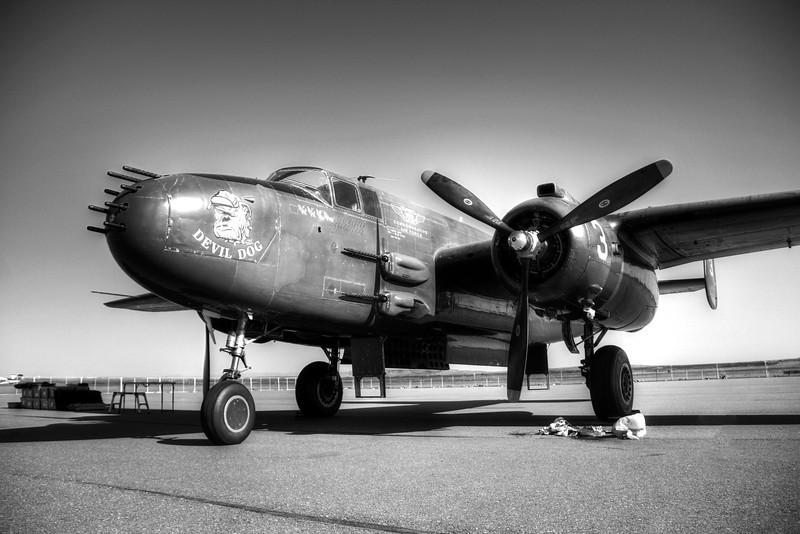 Black and White of the Devil Dog - a Marine style B-52 PBJ