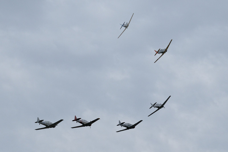 "Flock of North American SNJ ""Texans"" ""breaking away"" one at a time"