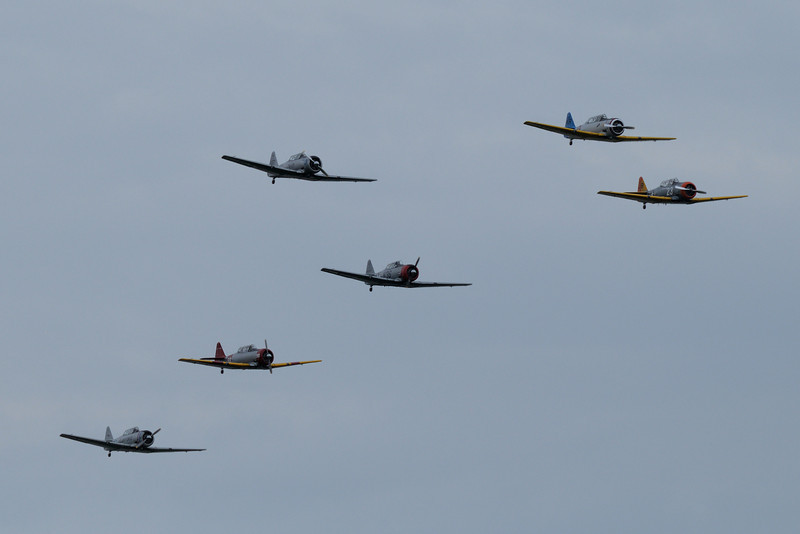 "Flock of North American SNJ ""Texans"""