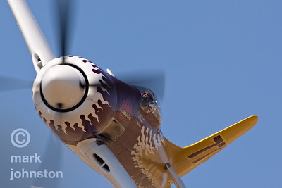 """One of the winningest Unlimited Class aircraft at Reno is Race 77, """"Rare Bear"""", a Grumman F8F Bearcat.  Here, John Penney flies """"the Bear"""" during qualifying sessions at the 2007 National Championship Air Races.  """"Rare Bear"""" qualified second in the field at a speed of 452.277 mph, and went on to win the Breitling Unlimited Gold Race at a speed of 478.394 mph."""