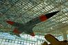 2007-04-09 - 269 - Seattle Museum of Flight - Northrop YF-5A - DSC_6422
